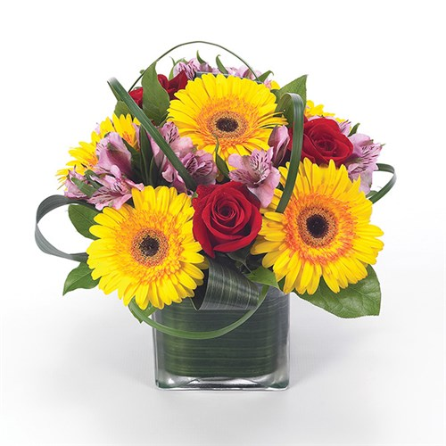Sunflower Fields flower bouquet (BF17-11K)